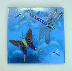 Glass Insect Panel
