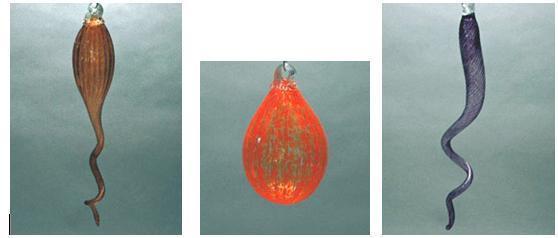 Picture of Blown Glass Chandelier | Sofitel
