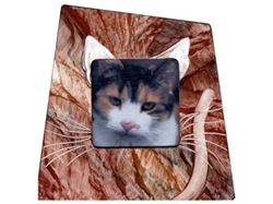 Picture of Grant-Norén Cat Frame #4