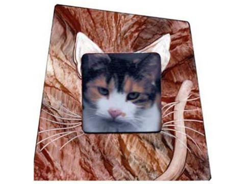 Grant-Norén Cat Frame #4