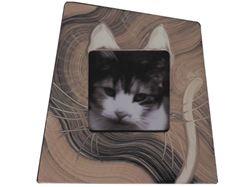 Grant-Norén Cat Frame #3