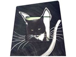 Picture of Grant-Norén Cat Frame #2