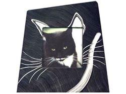 Grant-Norén Cat Frame #2
