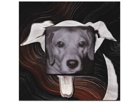 Grant-Norén Dog Frame #2