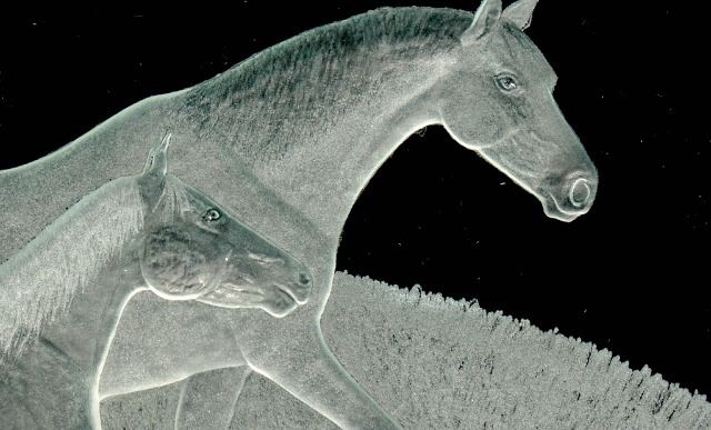 Picture of Etched Glass Vessel Sink - Horses