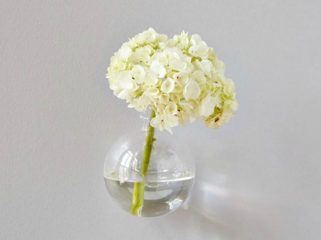 Picture of Clear Wall Hanging Sphere Vase