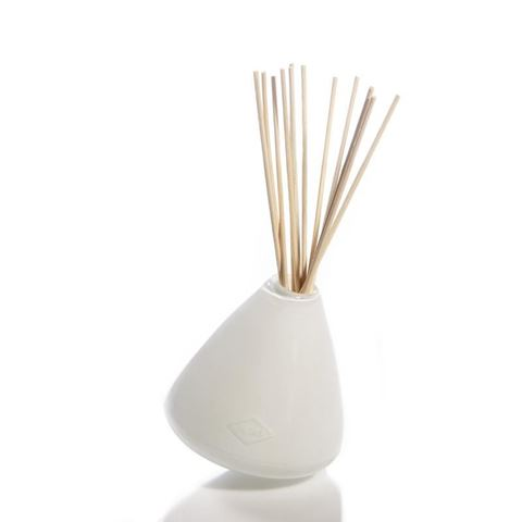 Diffuser Glass Vase by Alixx