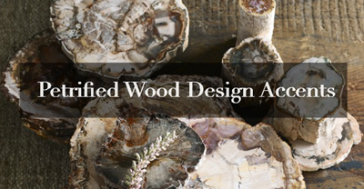 Petrified Wood Accents for Your Interior Design