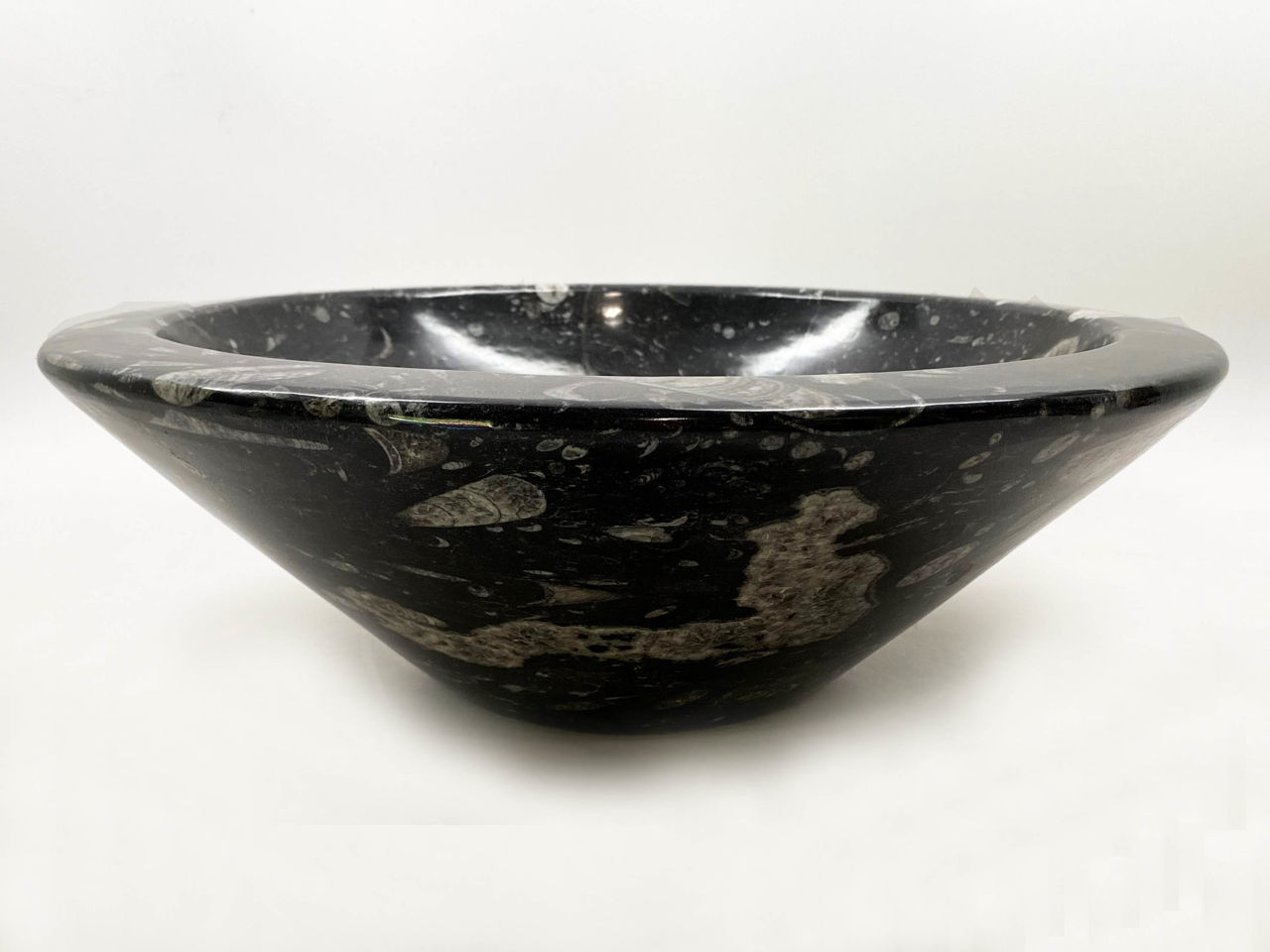 Picture of Genese Fossil Vessel in Noir (156)